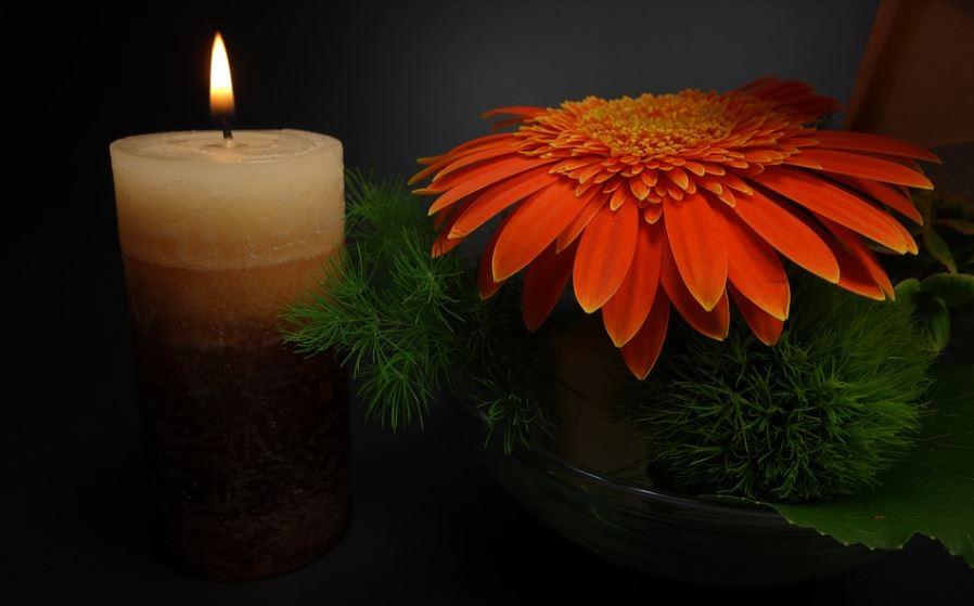 Monroe, NC cremation