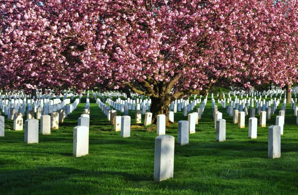 funeral homes in Indian Trail, NC